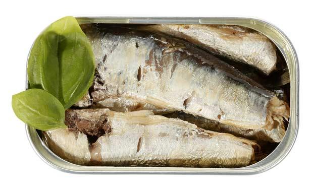 bigstock-Sardines-in-can-34953968