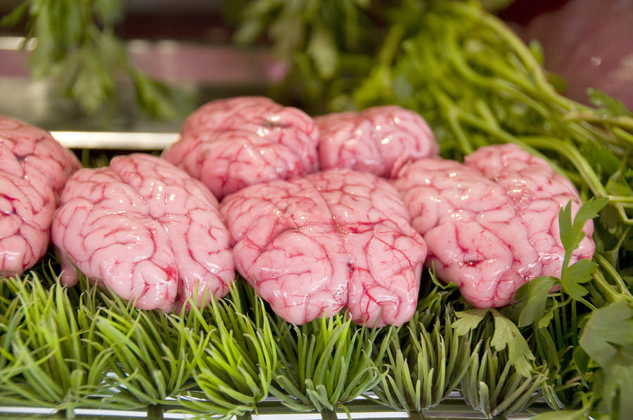 bigstock-Brains-In-Butcher-Shop-5230034