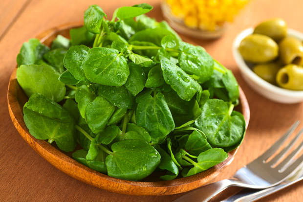 bigstock-Fresh-Watercress-35255801