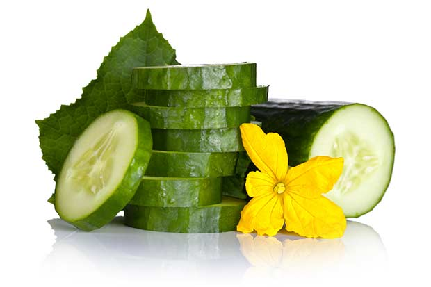 bigstock-Cucumber-47901974