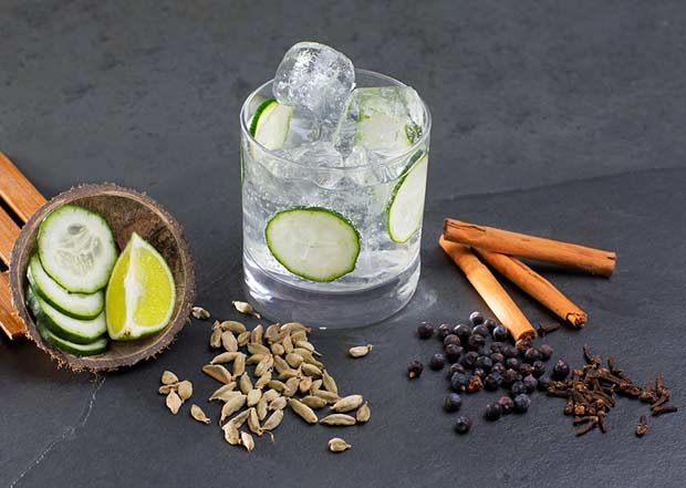 bigstock-Gin-tonic-cocktail-with-lima-c-45804487