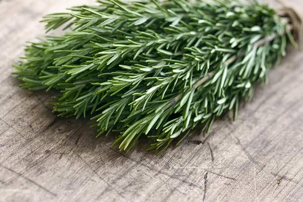 bigstock-Green-Fresh-Rosemary-Herbs-48887360
