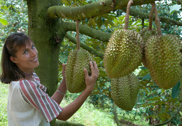 bigstock-In-The-Durian-Plantation-47775643