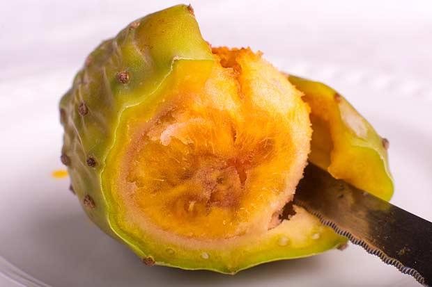 bigstock-Prickly-Pear-Cactus-48726596
