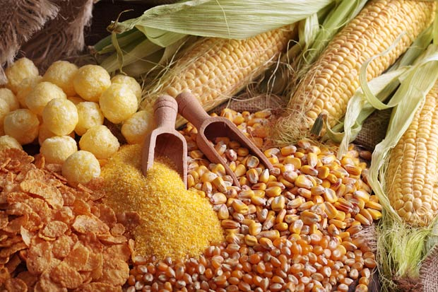 bigstock-Still-life-with-maize-products-54003295