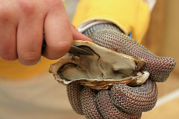 bigstock-Fresh-oyster-held-open-48987581
