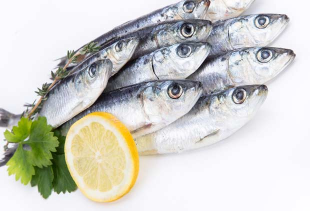 bigstock-Fresh-raw-sardines-on-white-ba-62714045