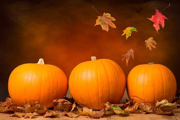 bigstock-Three-pumpkins-with-fall-leave-49194620